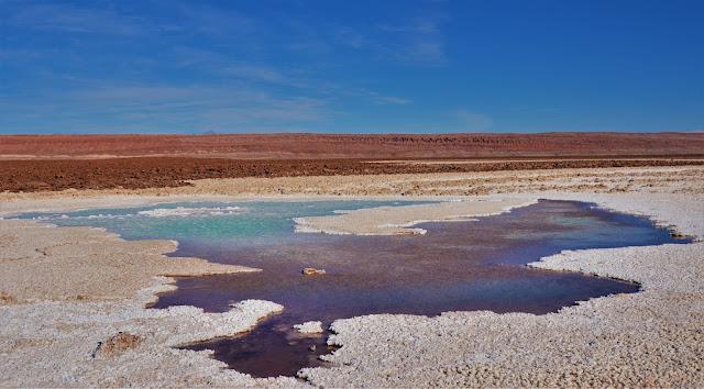 Lagoas mais rasas e de água mais clara - Lagunas Escondidas, Atacama