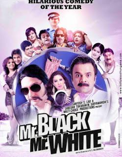 mr. black mr. white full movie download 720p