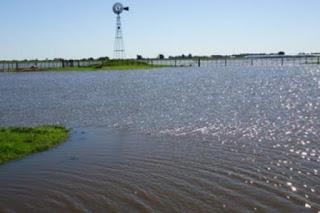 Aseguran que ya son 12 mil hectáreas las afectadas por las constantes lluvias. La demora en el cultivo de soja plantea interrogantes respecto a la producción.
