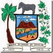 Publicidade: Câmara Municipal de Carnaúba dos Dantas-RN