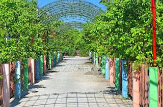 Lokasi Tempat Wisata Agrowisata Karangsari