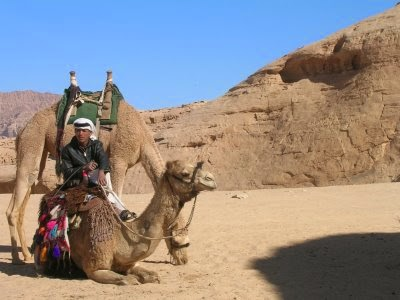 giordania deserto wadi rum