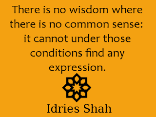 There is no wisdom where there is no common sense ~ Shah.