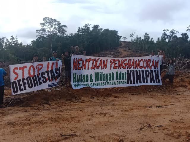 Dedi Mulyadi: Pembabatan Hutan serta Penggusuran Kaum Adat adalah Bentuk Pengkhianatan Pancasila