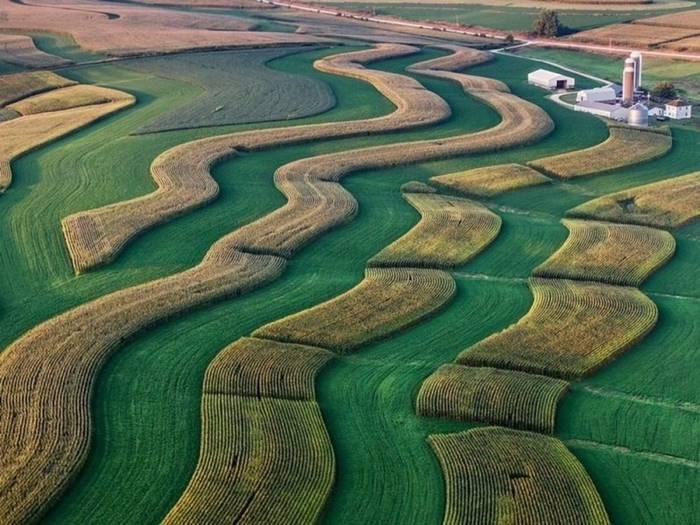 Fancy Patterns on a Wisconsin Farm
