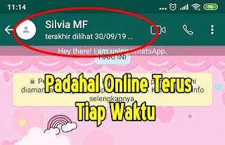 Cara Agar Whatsapp Terlihat Offline Berhari-Hari Padahal Online Setiap Waktu