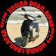 Honda lead af48 (49.9cc) 50 кубовая, обслуживание, ТО, ремонт, настройка, регулировка, скутер, мопед, мотороллер хонда, лид, леад 1998- 2003, купить запчасти