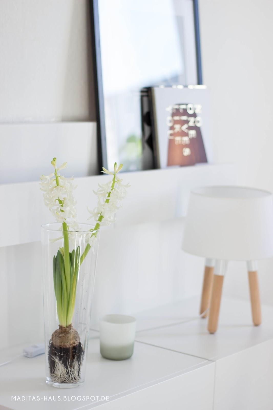 hyazinthe im glas oder vase maditas haus lifestyle und interior blog. Black Bedroom Furniture Sets. Home Design Ideas
