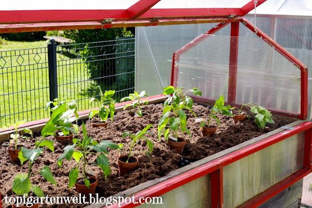 ein Hochbeet für den Garten - Gartenblog Topfgartenwelt