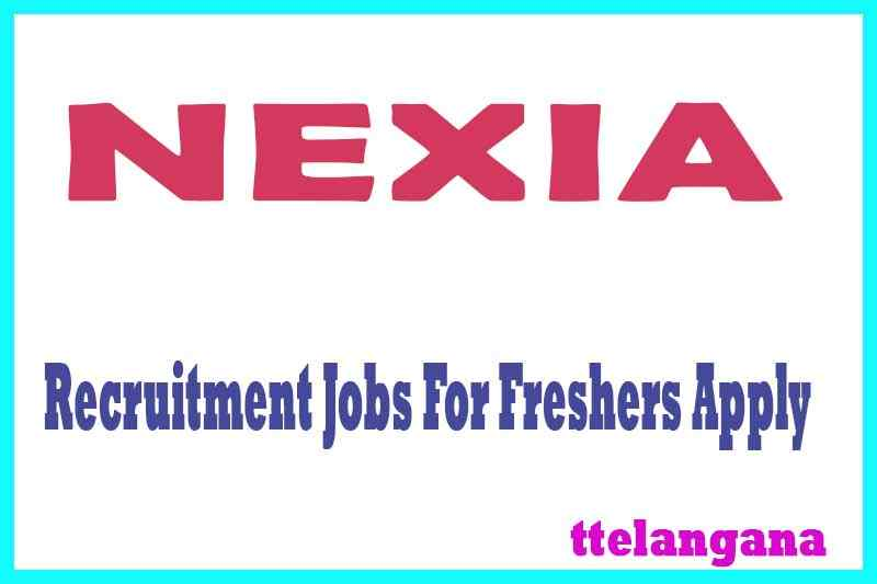NEXIA Recruitment Jobs For Freshers Apply