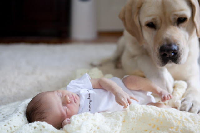 DAnna  Amie Fedora Photography IMG1068 low - Baby's Best Friend