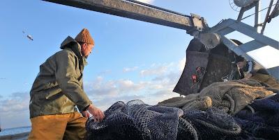 Pescaturismo Mallorca excursiones en barcos de pesca