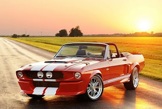 Muscle Car Convertible Type