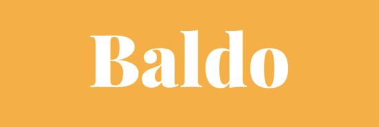 Paroladordine BALDO percorso di consulenze in remoto tempo