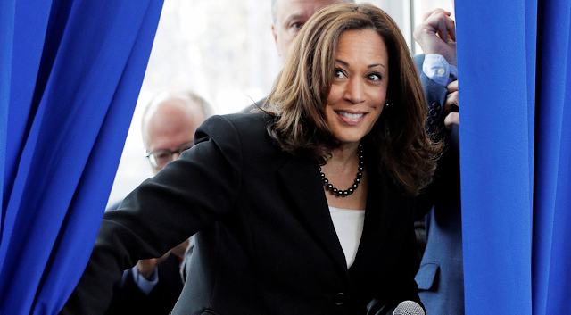 Democratic Presidential Candidates Embrace Radicalism