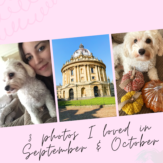 collage - pink background, photo of me and bear, radcliffe camera oxford, bear with pumpkins