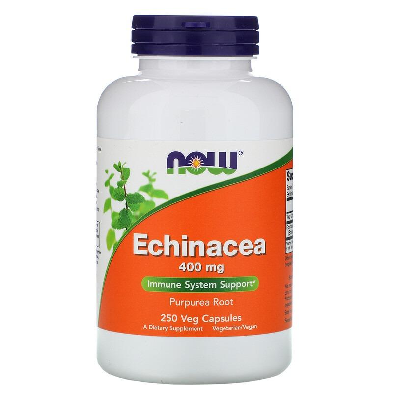 Now Foods, Echinacea, 400 мг, 250 растительных капсул