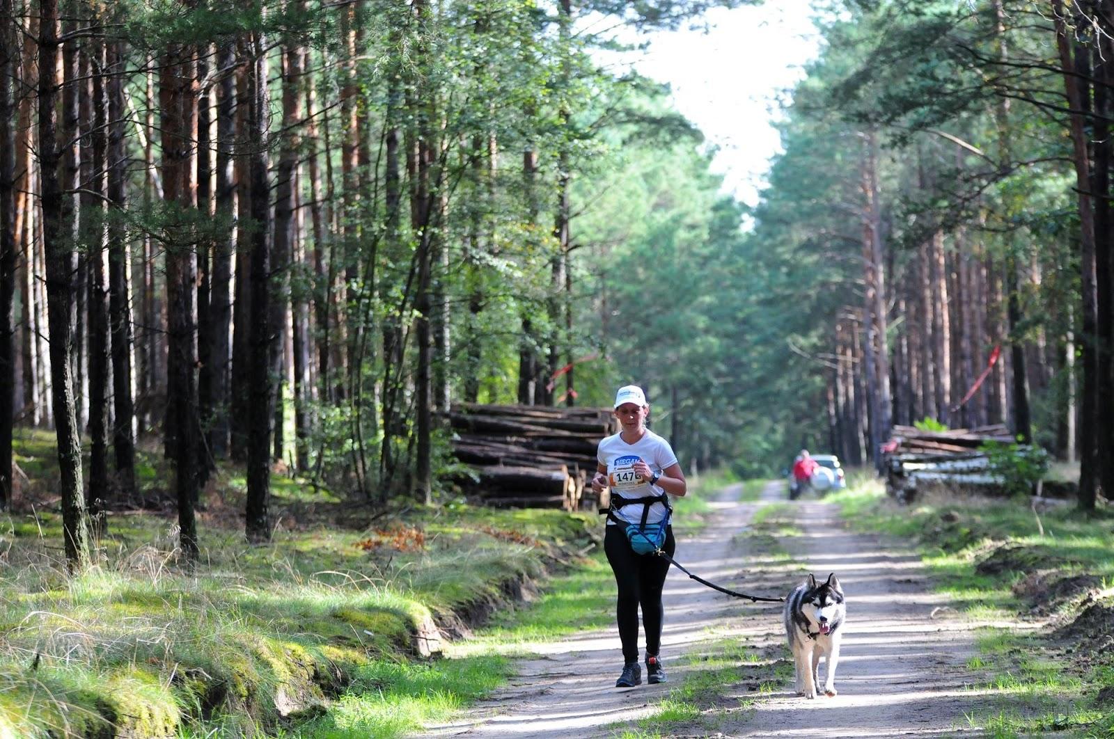 Bieg z psem w lesie, fot. Mierzęcin Trail