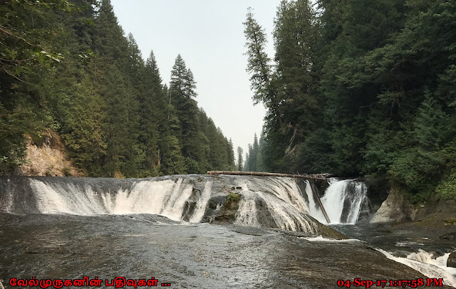 Middle Falls in Lewis River
