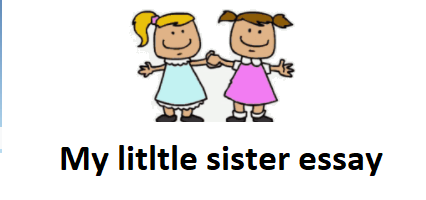 Essay on My Sister in Hindi