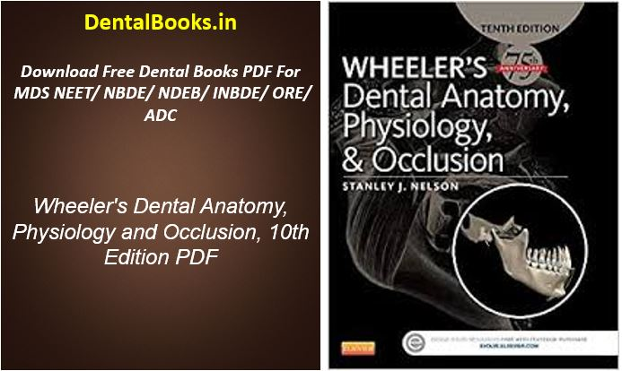 Wheeler's Dental Anatomy, Physiology and Occlusion, 10th Edition PDF