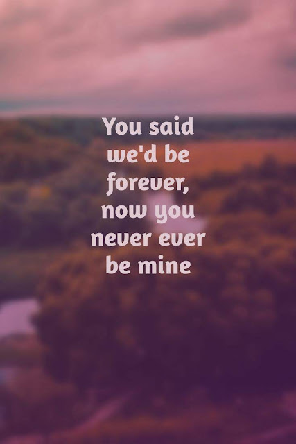 You said we'd be forever, now you never ever be mine