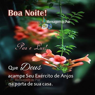 Que Deus acampe Seu Exército de Anjos na porta de sua casa. Paz e Luz! Boa Noite!