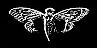 لغز-Cicada-3301