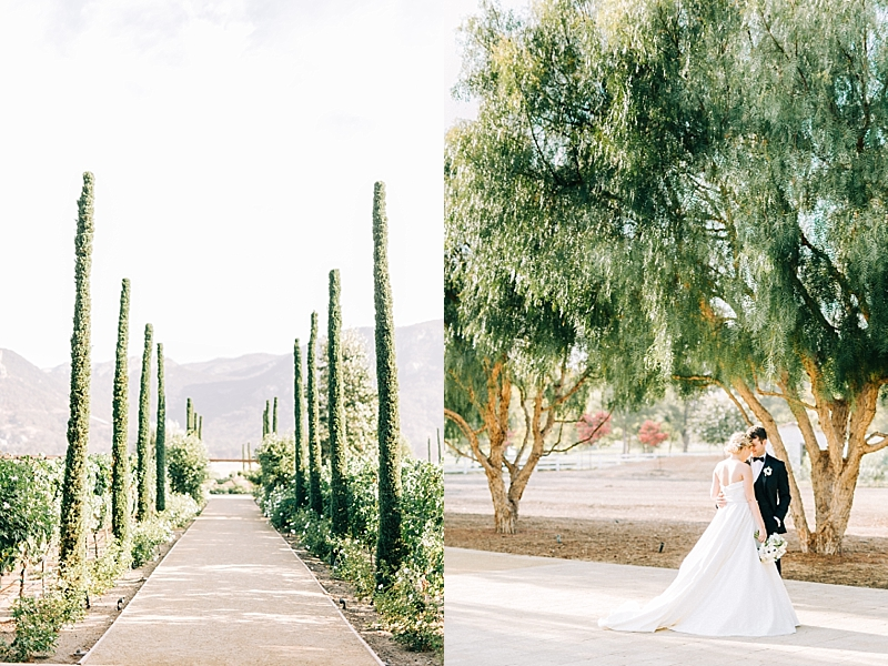 Classic and Elegant Vineyard Wedding Ideas in Southern California at Epona Estate