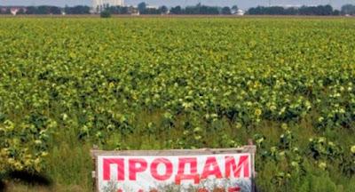 Закон про ринок землі може бути проголосовано вже 14 січня