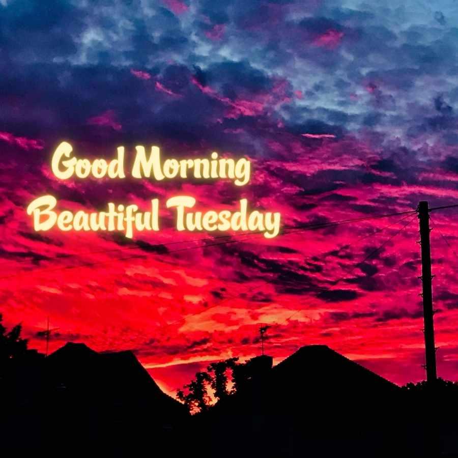 good morning happy tuesday funny