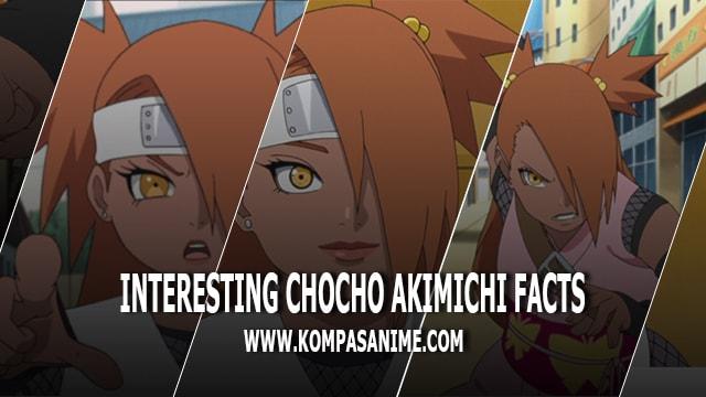 10 Fakta-Fakta Tentang Akimichi Chocho yang Perlu Anda Ketahui!