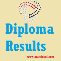 Diploma Results 2017