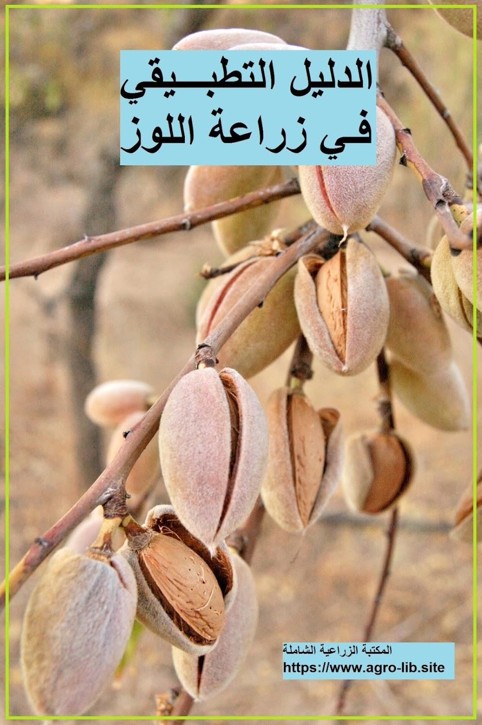 كتاب : الدليل التطبيقي في زراعة اللوز