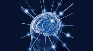 الذاكرة.. خمس طرق حديثة لجعلها أفضل