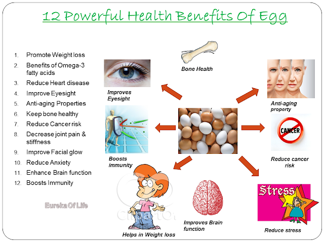 12%2BPowerful%2BEggs%2BHealth%2BBenefits