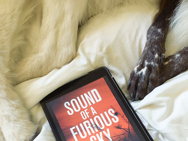 Sound of a Furious Sky by H.N.Wake review