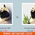 ضغط الصور وتقليل حجمها مع الحفاظ علي جودتها من خلال موقع tinypng