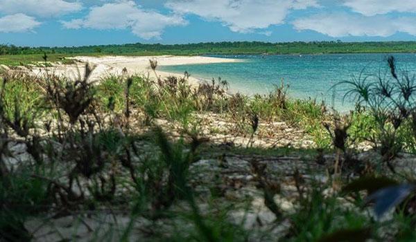Menikmati Keindahan Wisata Pantai Cemara Lombok