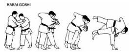 Teknik Dasar Judo Beserta Gambarnya