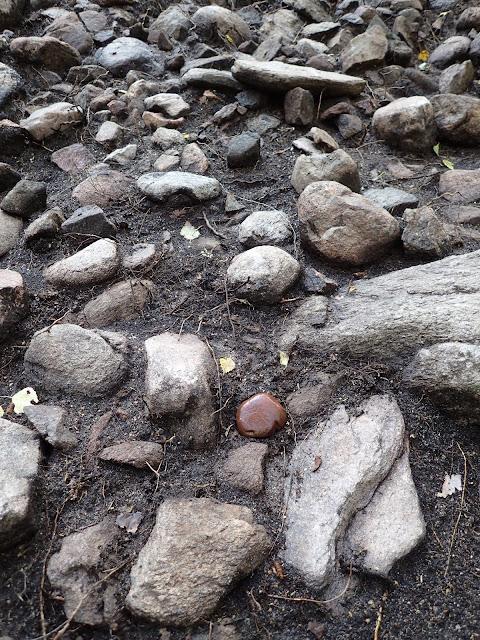 Bronze Age phallic stone found in Sweden