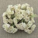 http://www.stonogi.pl/kwiatki-papierowe-ivory-mulberry-paper-gypsophila-flowers-saa403-p-16920.html