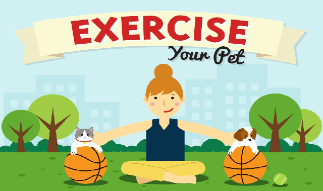 Exercise your Pet: Simple Solutions & Easy Answers #infographic