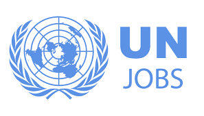 Image result for un jobs- tanzania