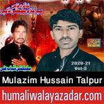 https://aliwalayazadar.blogspot.com/2020/08/mulazim-hussain-talpur-nohay-2021.html