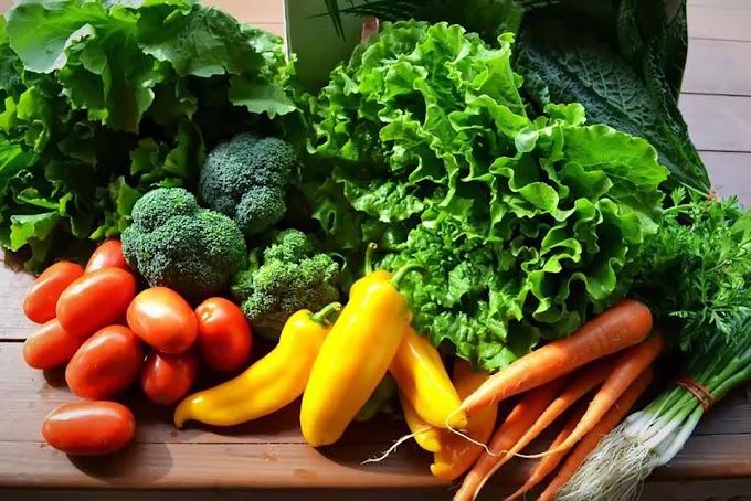 Nguồn cung cấp rau sạch tại gốc bán buôn bán lẻ giá sỉ lẻ ở hà nội có giấy an toàn thực phẩm