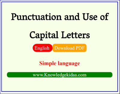 Punctuation and Use of Capital Letters | English Grammar | Hindi | PDF Download |