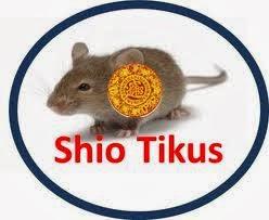 Ramalan Untuk Shio Tikus Pada Tahun 2017