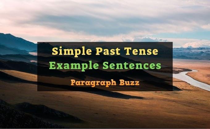 Simple Past Tense Example Sentences   Affirmative, Negative, Interrogative