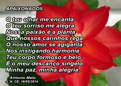 O teu olhar me encanta, o teu sorriso me alegra, nossa paixão é a planta, que os nossos carinhos rega, o nosso amor se agiganta, nos instigando harmonia, teu corpo formoso e belo, é o meu descanso singelo, minha paz, minha alegria... Poesia de Antonio Melo
